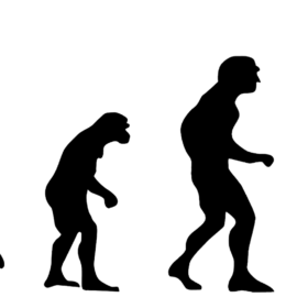 Four Steps in the Evolution of Chronic Pain