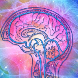 Video: Your Brain Becomes Sensitized