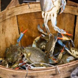 Escaping Your Family – The Crab Bucket