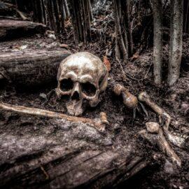 Romanticizing Pirates – Normalizing Suffering and Abuse