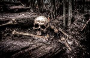 skull-2525192_1920