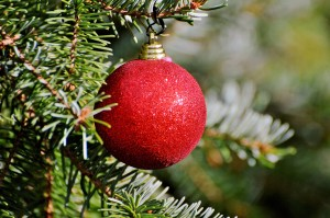christmas-ornament-2917598_1920