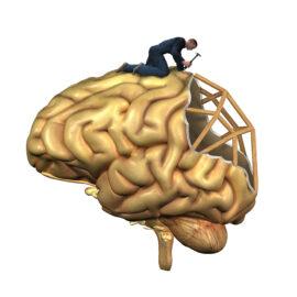 Reprogram your Brain Around Pain