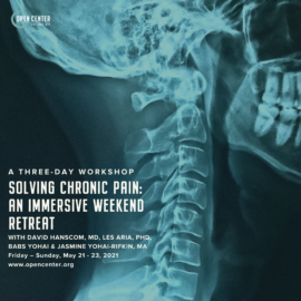 Experiencing Safety: Solving Chronic Pain: An Immersive Weekend Retreat